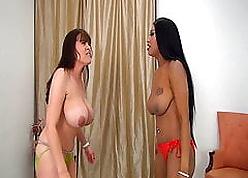 Patrice vs Rebecca  Chubby Titty Battlers